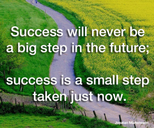 Success will never be a big step