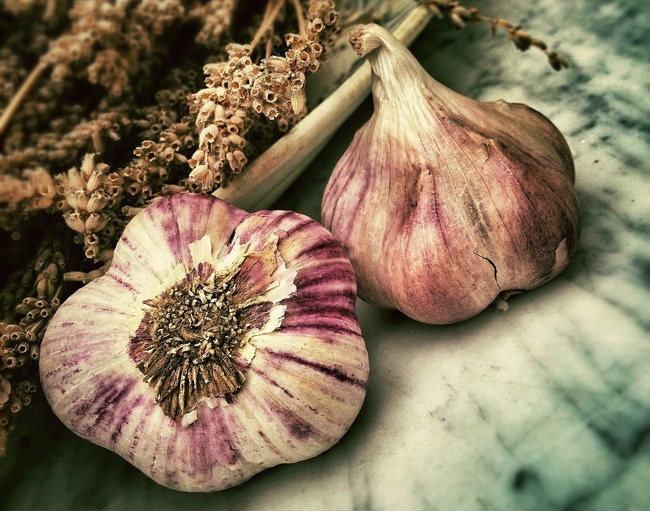 garlic-how-to-get-rid-of-acne-overnight-home-remedies