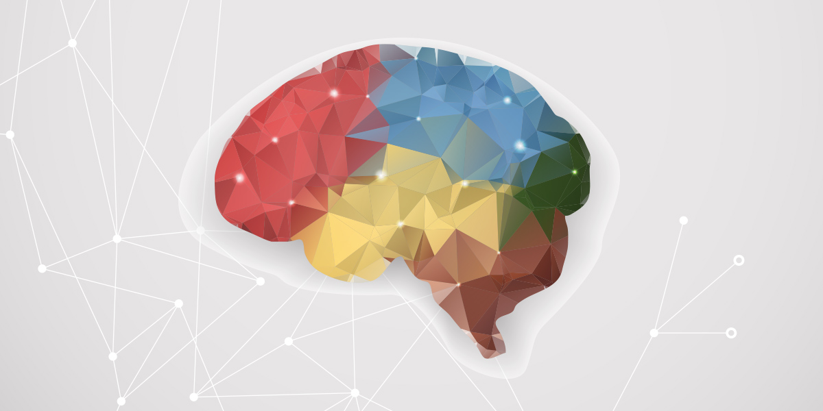 Enhance brain function picture 2