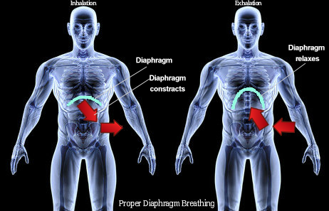 Proper diaphragm breathing