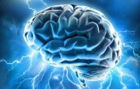 How To Keep Your Brain Healthy And Sharp