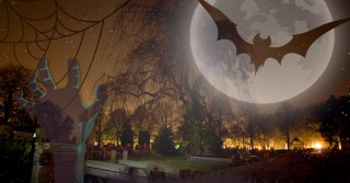 halloween night-tree-spooky-sullen