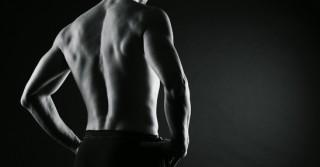 male bodybuilder model