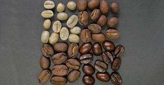 food coffee 1