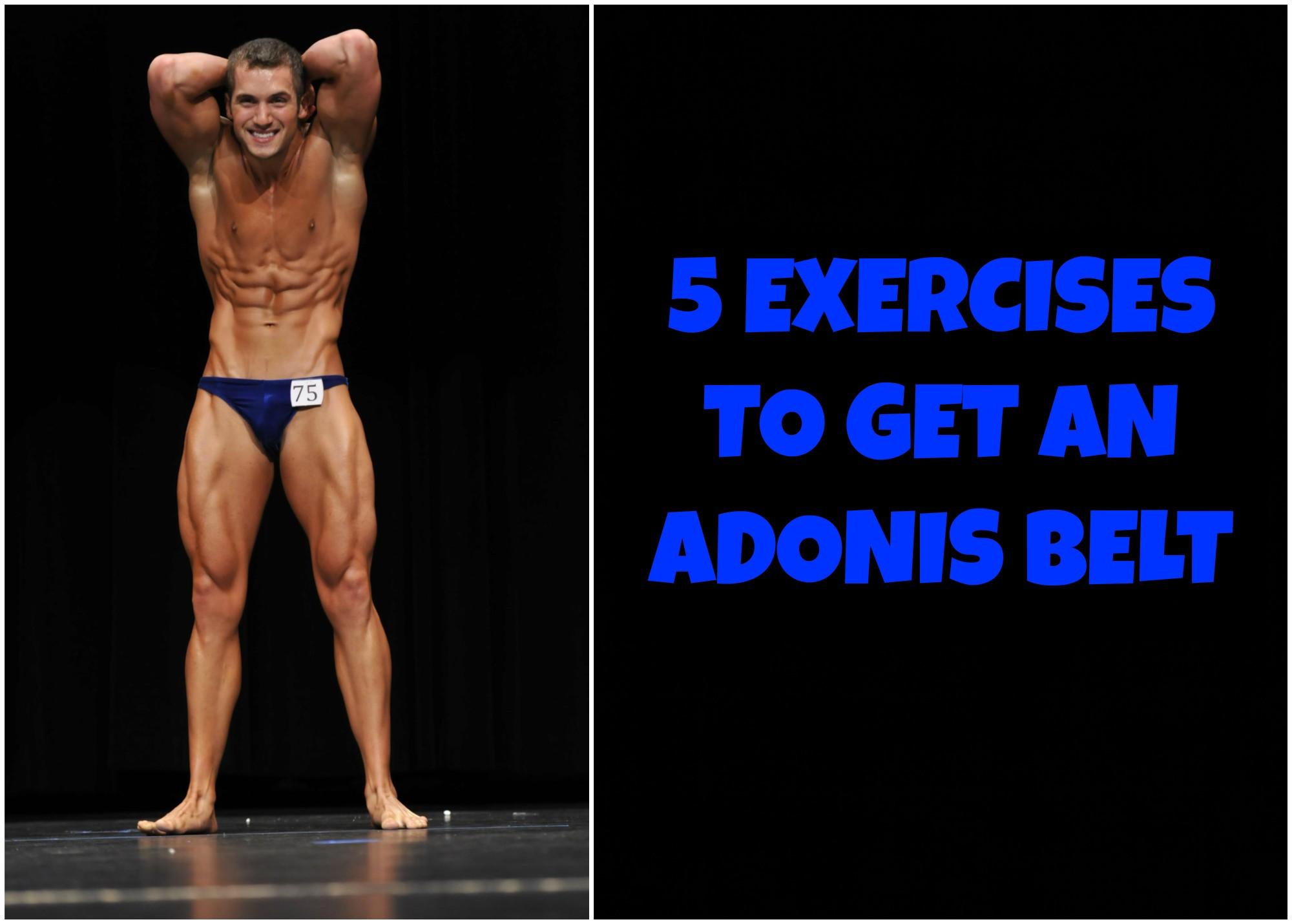 Adonis Belt