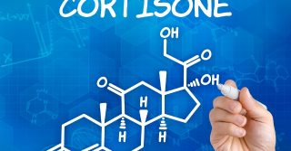 hat you should know about CORTISONE