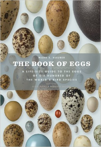 the-book-of-eggs-mark-e-hauber