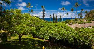 1. Hana-Maui-Hawaii