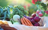 Here's Why Organic Food Is NOT Always Better for Your Health
